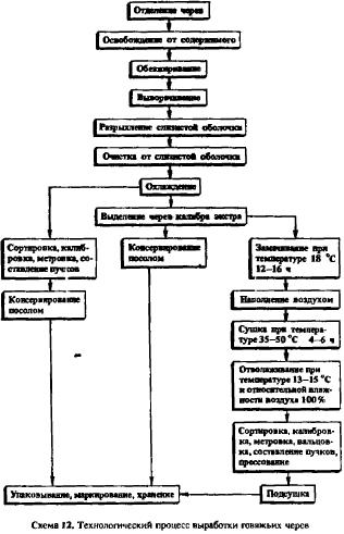 Технология обработки кишечного