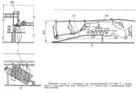 Схема крупного рогатого скота 657